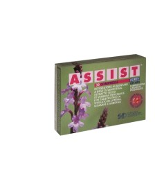 ASSIST FORTE RETARD INTEG.30CM